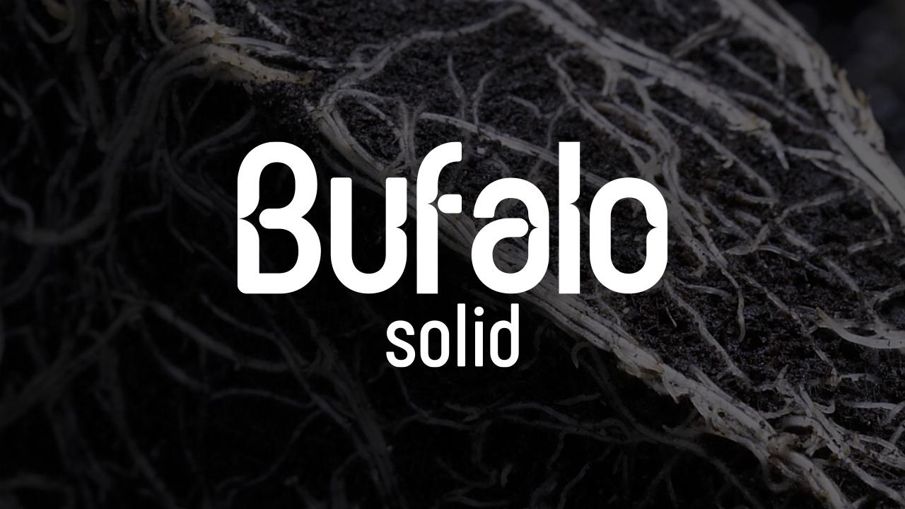 Bufalo-Solid