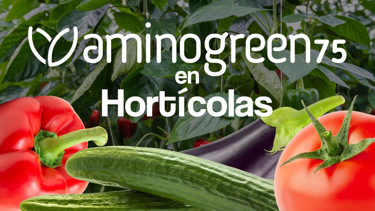 thumbnail-horticolas